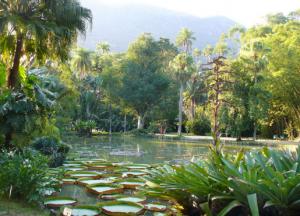 Jardim Botânico no Rio de Janeiro.